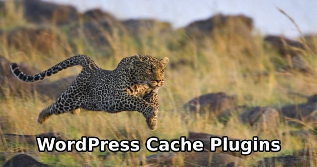 5 Best WordPress Cache Plugins & Make Fastest Blog
